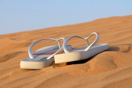 Sandal jepit dari alga dengan tampilan modis tapi ramah lingkungan