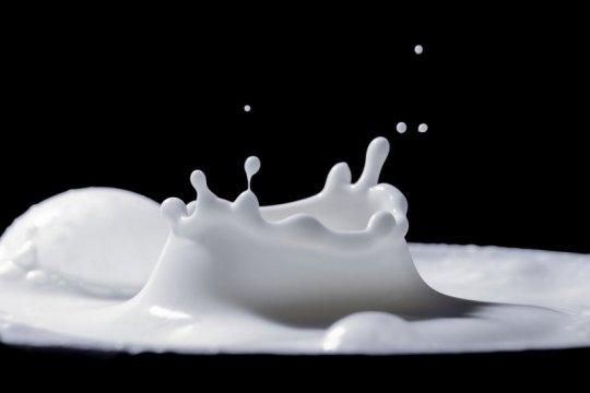 Demi imunitas tubuh, pentingnya minum susu saat pandemi