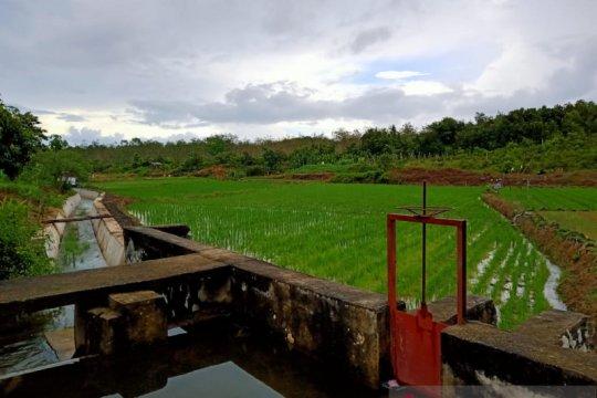 Petani Belitung diimbau bersihkan saluran irigasi dalam menghadapi musim hujan