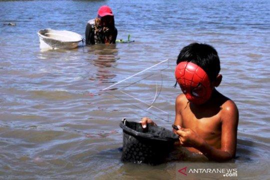 Mencari Kerang Di Sungai Jeneberang Gowa