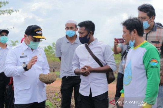 Gubernur Babel serahkan bantuan kepada petani holtikuktura Cambai