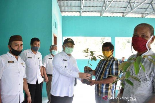 Pemprov Babel jadikan Desa Belimbing sentra durian