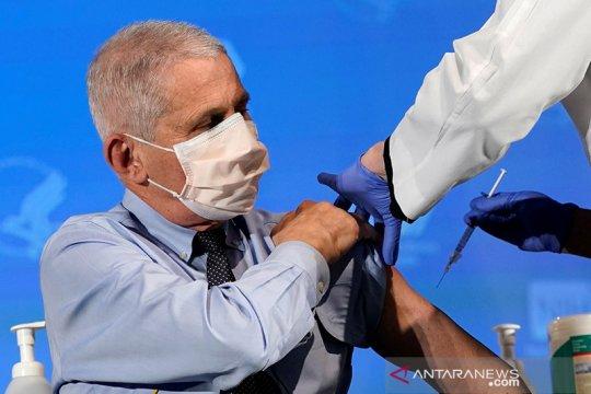 Dr. Fauci: Infeksi corona di AS kemungkinan stabil