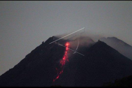 Merapi luncurkan guguran lava pijar sembilan kali
