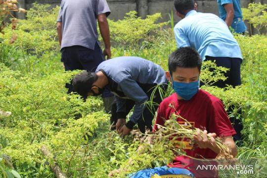 Penerima Beasiswa Pendidikan PT Timah Dibekali Soft Skill ditengah Pandemi