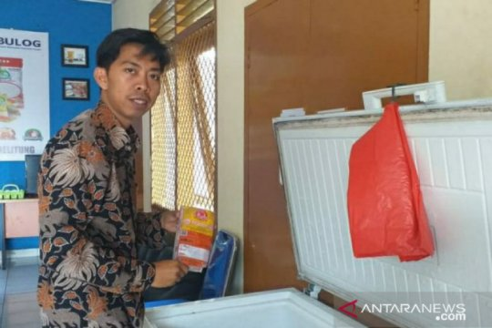 Perum Bulog Belitung kembali jual daging kerbau beku impor