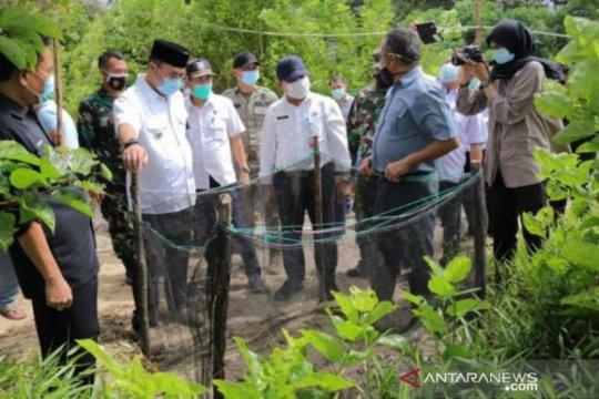 Gubernur Babel: Penangkaran penyu Desa Guntung jadi wisata edukasi
