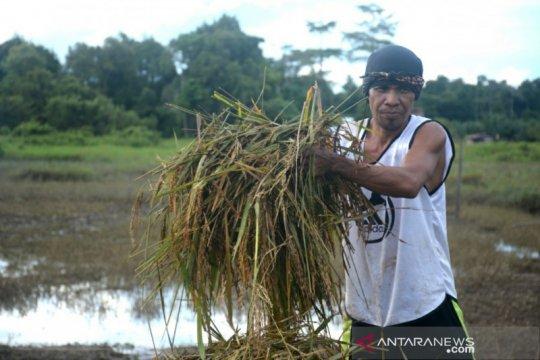 Catatan perjalanan Perduli Banjir Sembakung