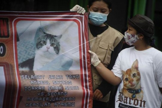 Aksi protes kasus penyembelihan kucing Page 1 Small