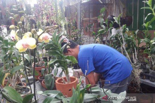 """Mustika Desa"" upaya Temanggung percepat pemulihan ekonomi"