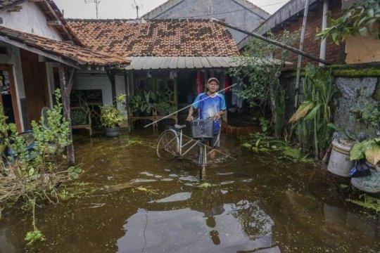 Banjir di Kabupaten Pekalongan Page 4 Small