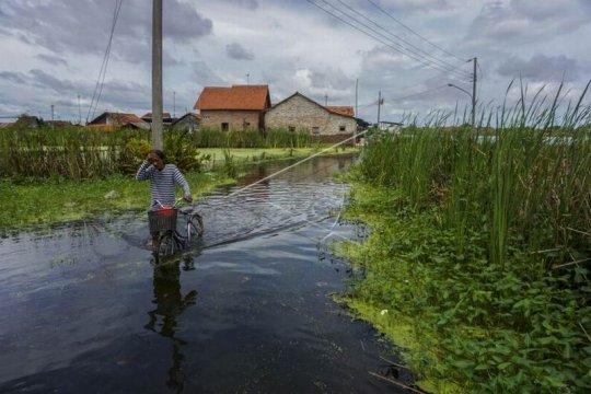 Banjir di Kabupaten Pekalongan Page 2 Small