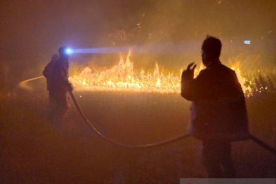 BPBD Belitung catat sembilan kali kebakaran hutan dan lahan selama Februari