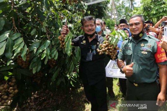 Menteri Pertanian dorong pengembangan  agrowisata buah