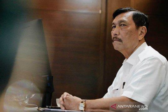 Menteri Luhut minta penegak hukum berantas penyeludupan timah