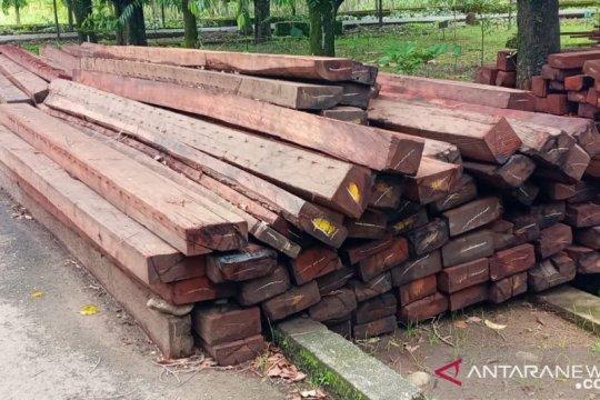 Gakkum KLHK Sulawesi tetapkan dua tersangka kasus kayu ilegal