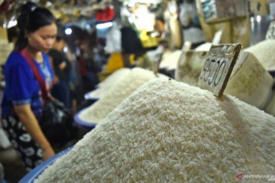 Perpadi mendorong pemerintah intensifkan penyerapan beras dalam negeri