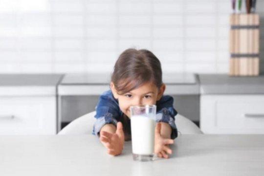 Ganti makanan utama anak dengan susu beresiko obesitas