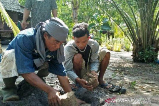 Bangka Belitung aktifkan UPTD KPHP tanam mangrove 2.240 hektare