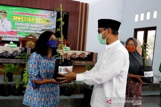 """Vanili jadi salah satu unggulan """"Mustika Desa"""" di Temanggung"""