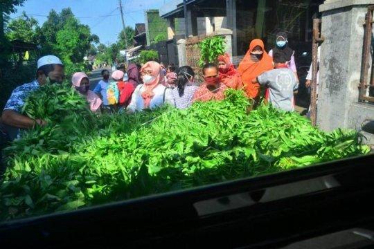 Aksi membagi sayur gratis