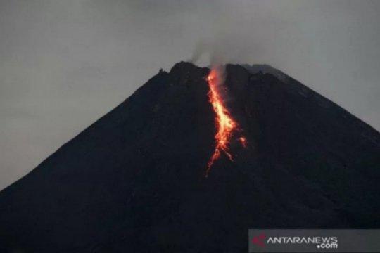 Gunung Merapi luncurkan guguran lava pijar sejauh 1 Km