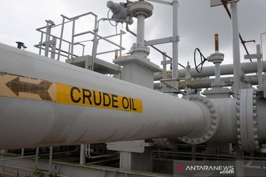 Percepatan program vaksinasi COVID-19 dorong peningkatan harga minyak mentah