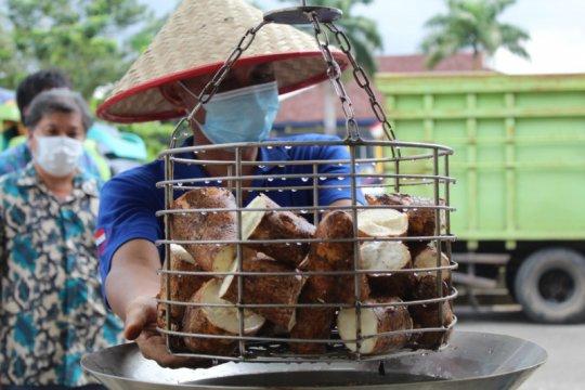 Lampung kembangkan beras analog sebagai alternatif pangan