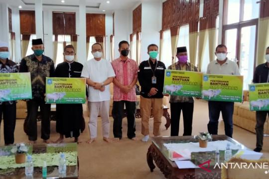 Pemkab Bangka Tengah siapkan 65 sapi kurban untuk Idul Adha