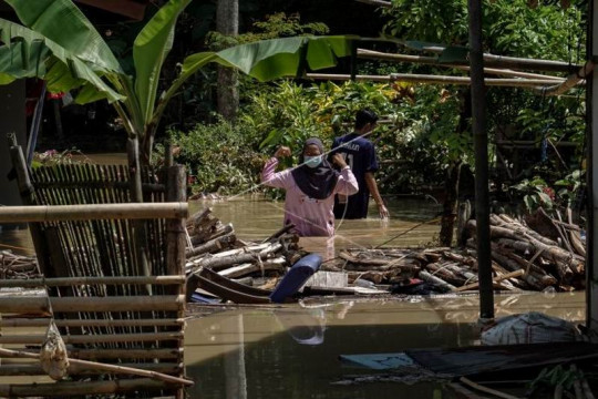 Banjir di Cilacap Page 4 Small