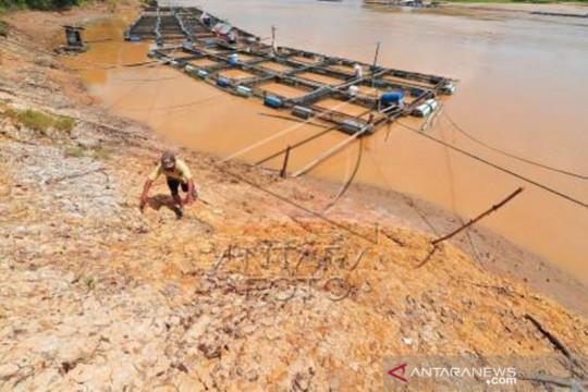 Ancaman Abrasi Sungai Batanghari