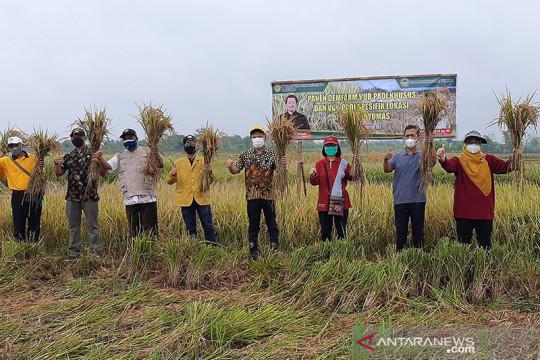 Petani Banyumas tertarik varietas padi Balitbangtan  Kementan