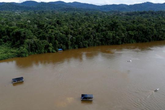 Hampir 30 persen ekspor emas Brazil dari tambang ilegal