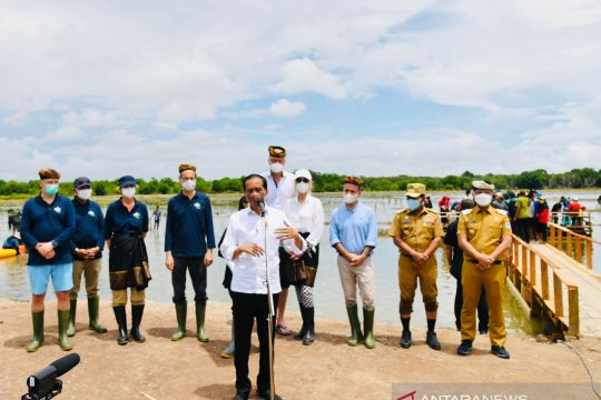 President seeking to restore 600,000 hectares of mangrove forests