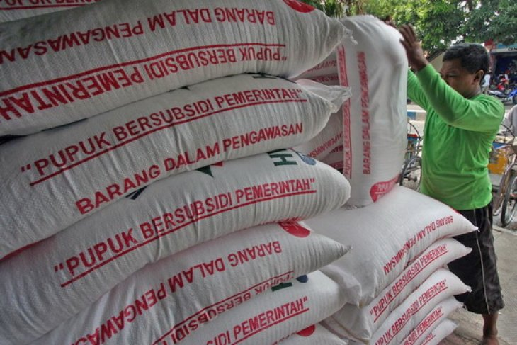 Pusri guarantees sufficient supply of subsidized fertilizer in Bengkulu
