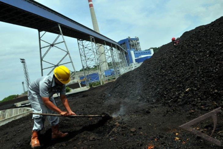 Tanjung Kasam power plant needs 40,000 tons of coal