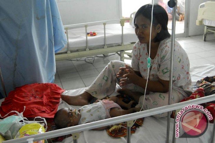 Padang hospital treats 27 bird flu suspects