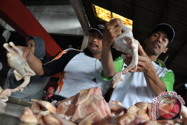 Indonesian ministry discloses confiscation of illegal meat import