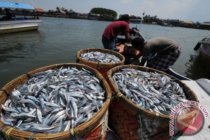 Indonesian fisheries need more investment