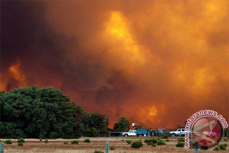 Petugas pemadam kebakaran di Australia Barat kendalikan kebakaran hutan