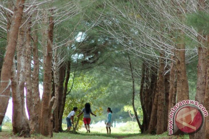 Surabaya to have more urban forests: Mayor