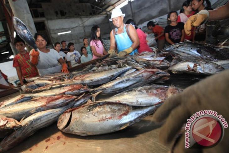 Tuna exploitation alarming: minister