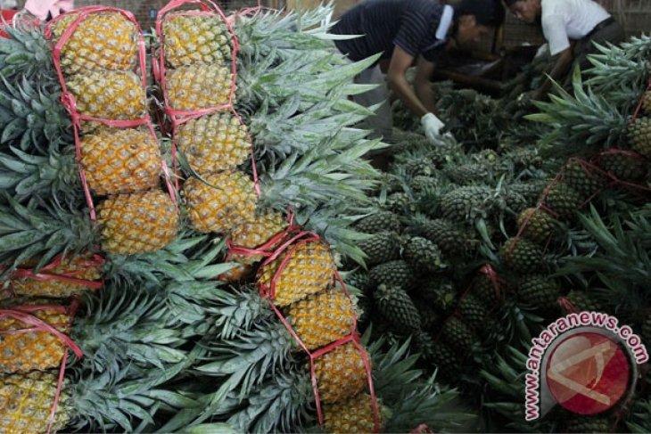 Mendag: Nanas segar Indonesia akan masuk pasar China