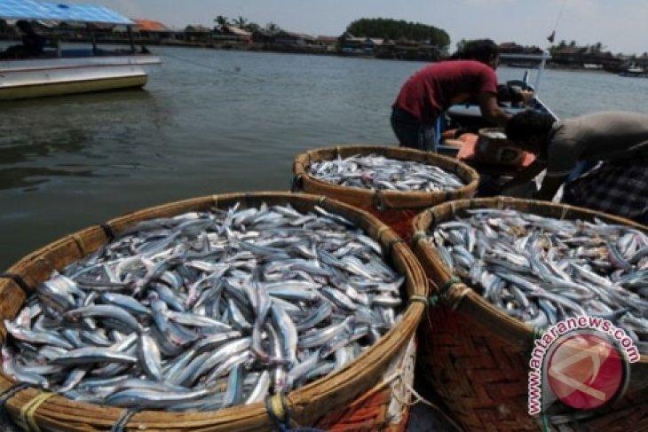 Nelayan Kaur minta rehab pasar ikan tradisional