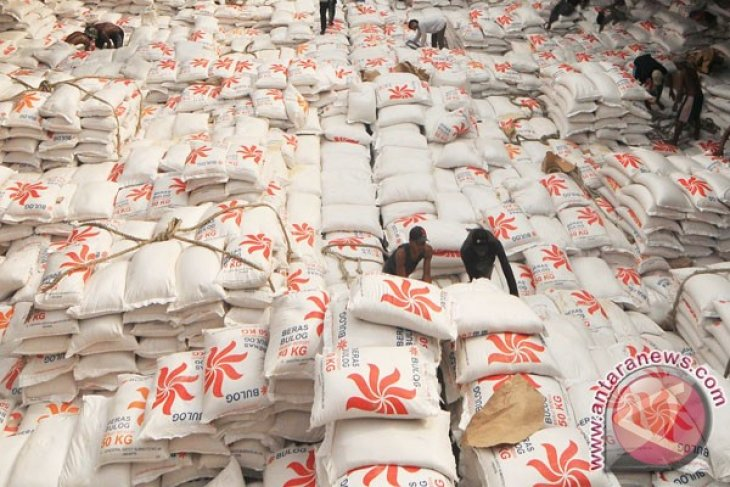 Rice stock in East Nusa Tenggara enough for 3 months only