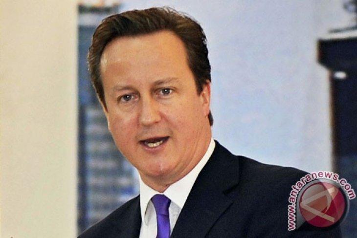 David Cameron support international contact group