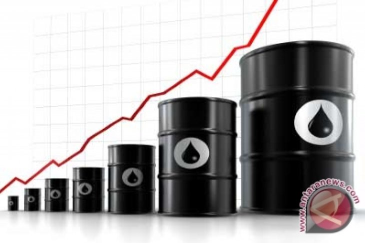 Pemerintah Kaji Perubahan Harga BBM Pada Maret