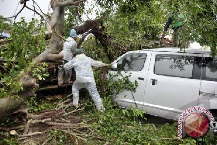 Pemkot Berikan Santunan pada Korban Tertimpa Pohon