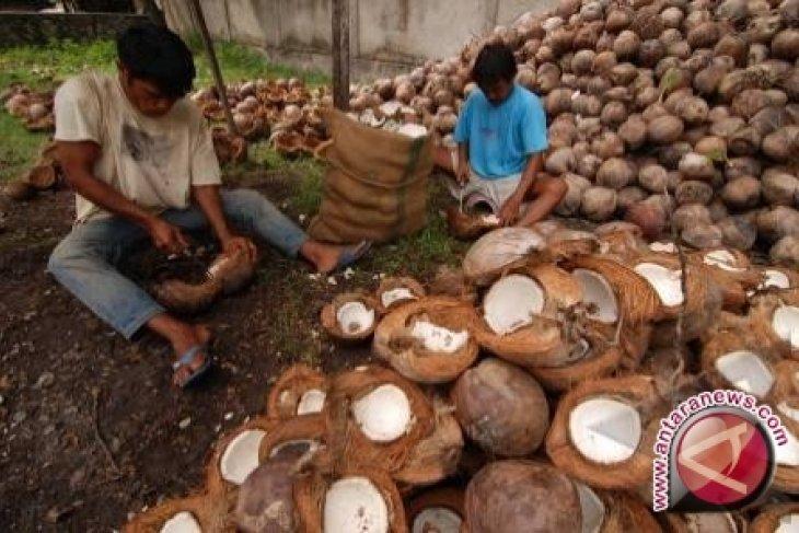 Sulawesi Utara ekspor tepung kelapa ke 10 negara