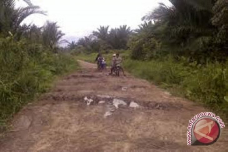 Pemekaran Kecamatan Perbatasan di Sintang Tunggu BNPP